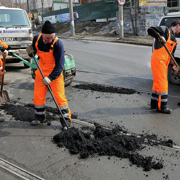 Зоомагазин – Тарасовка, сп Тарасовское, Пушкинский район